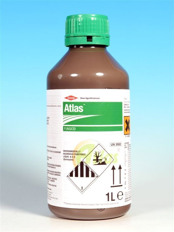 ATLAS S 1l