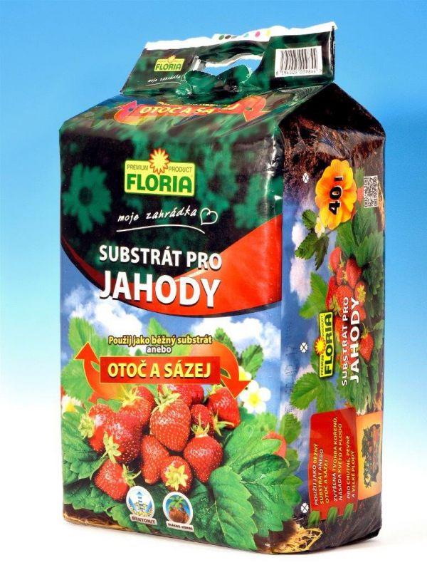 Floria Substrát pro jahody 40l