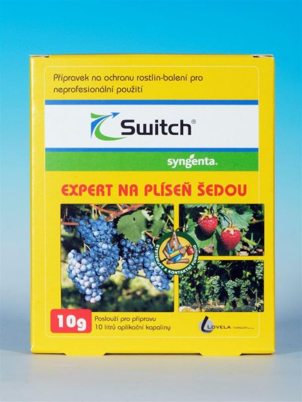 Switch 10g