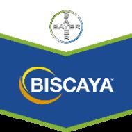 Biscaya 240 OD 5l
