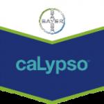 CALYPSO 480 SC 1l