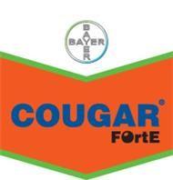 COUGAR FORTE 5l