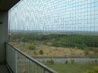 Japonská ochranná sít proti holubům 6x2,7m