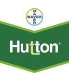 Hutton 5l